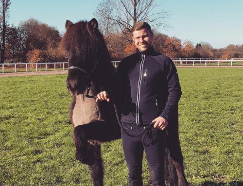 Pferdewirtschaftsmeister